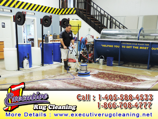 Rug Cleaner Edmond (2)