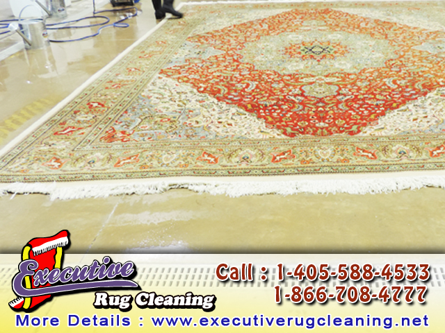 Rug Cleaner Edmond
