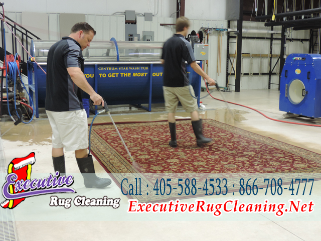 copy42_Rug Cleaner Edmond (1)